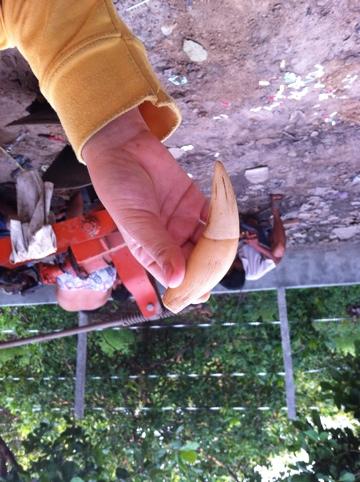 20110627-092534.jpg